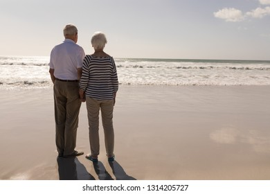 Rear view of senior couple standing on beach in the sunshine