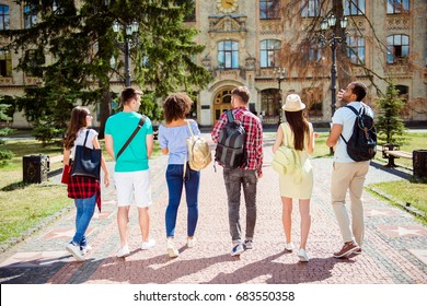 Rear view of six students, bachelor`s campus life rhythm. They are walking after to college building and discuss the project, gesturing, sharing the ideas