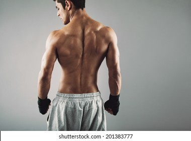 Rear view of strong young male boxer. Fitness male model wearing boxing gloves standing on grey background.