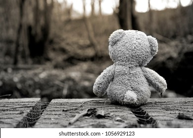 Rear view Teddy bear sitting on wooden bridge and looking at evening light. Lonely teddy sitting alone at woodland in black and white