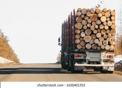 Rear view of trucks that transport logs on a winter road.