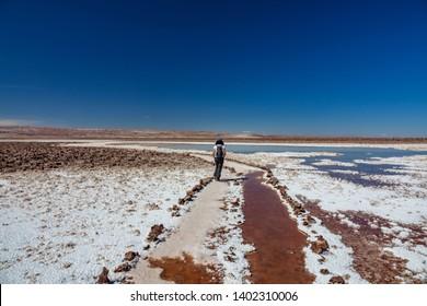 Rear view of walkin walking along salar in Baltinache Lagoons, Atacama