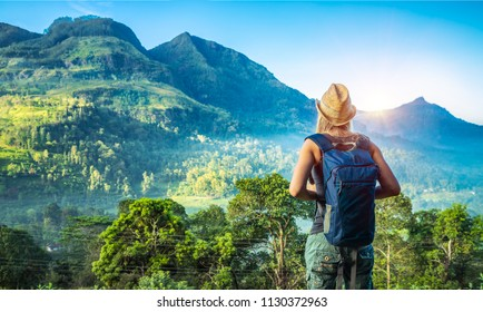 Rear view of a young tourist girl enjoying amazing beauty of tropical nature of Nuwara Eliya, Sri Lanka, active summer vacation on exotic island