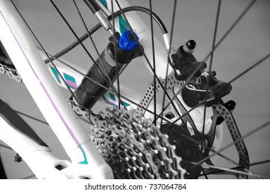 rear wheel mountain bike, brain, gear, brake disc, frame, cross country