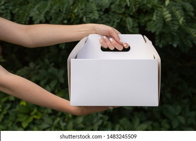 Receiving package of baking mock up. Close up female holds in hands cake dessert in unmarked clear empty blank cardboard box. Advertising area. Receiving package mock up. Delivery concept.