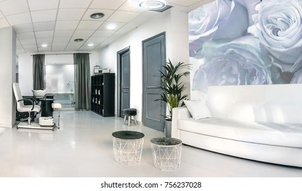 Reception of a bright beauty salon with sofa, table and plant. Interior design.