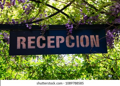 Reception sign hanging through green leaves and purple flowers
