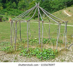 Reconstruction of the frame of an ice age european shelter. The covering would be of cured animal skins. One of the oldest buildings