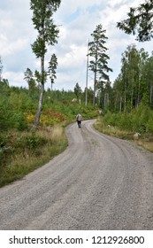 Recreation walk on a gravel road in a beautiful forest