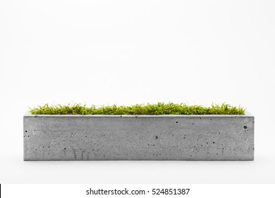 Rectangular pots of concrete with a white background