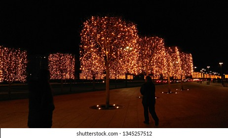Rectangular-shaped plane trees wrapped in Christmas lights along a road at night. Rows of lit trees creating a festive atmosphere. New Year outdoor lights on trees. Lit trees in the street.