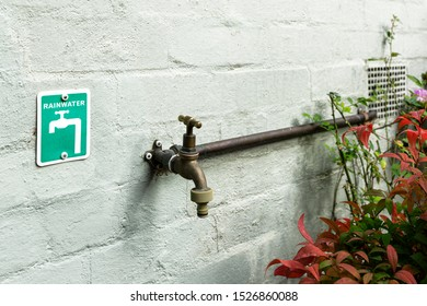Recycled water signage next to residential water faucet.