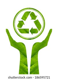 Recycling arrows made of green leaf in woman hand isolated on white background. green eco energy concept