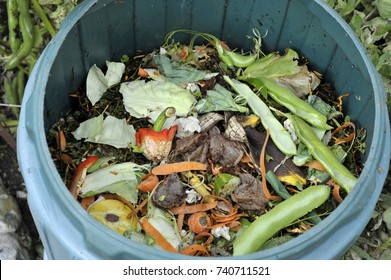 Recycling kitchen food waste in a home compost bin including fruit and vegetable peelings, tea bags and egg shells and general gardening waste.
