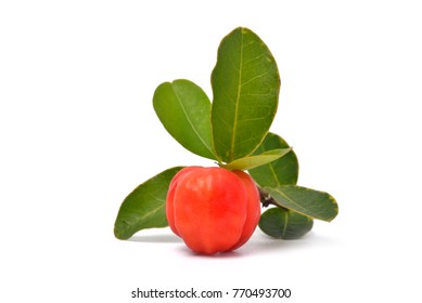 Red acerola cherry isolated on white background, High vitamin C and Antioxidant fruit