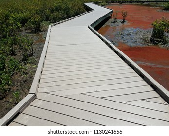 red algae and water and boardwalk in a wetland area
