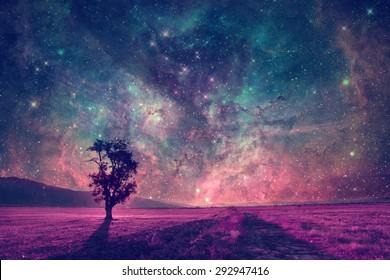 rote außerirdische Landschaft mit einsamer Baumsilhouette in violettem Feld - Elemente dieses Bildes werden von der NASA eingerichtet