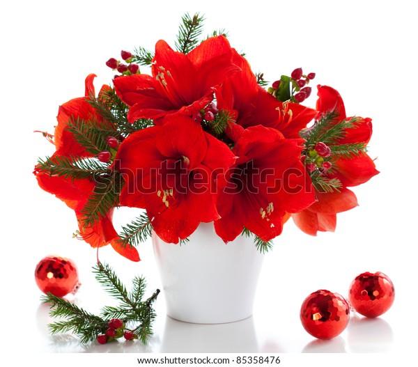Red Amaryllis Vase Christmas Decorations Stock Photo Edit Now 85358476
