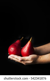 Red anjou pears held in cupped hands on black background