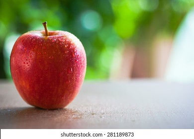 Red apple in natural light with blurred background effect of trees in the garden. image suitable for restaurants, supermarkets, wholesalers, resellers Dragon Fruit products or health products
