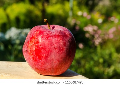 Red apple on blurred green background