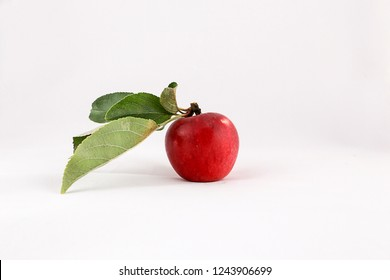 A red apple on a branch with leaves on a white background