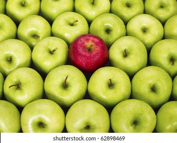 red apple standing out from large group of green apples. Horizontal shape