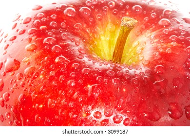 Red apple with water drops. Over white background