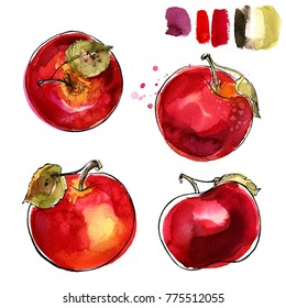 Red apples painted in watercolor and ink on a white background. Sketch of fruit.