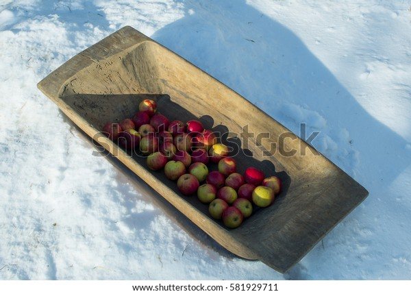 Red apples in the wooden trough on the snow.Vintage household equipment. The old wooden trough. The trough with apples