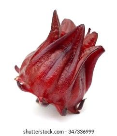 Red artichoke flower Isolated on White Background