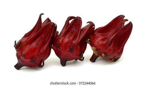 Red artichoke flowers Isolated on White Background