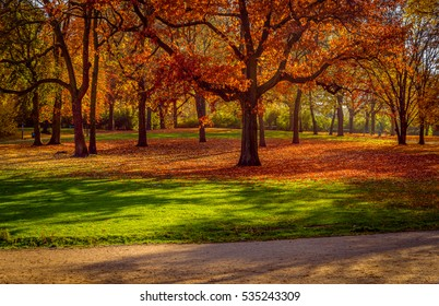 Red autumn colors in the park.