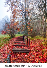 Red autumn forest stairway fog view. Autumn forest mist stairway scene. Autumn fog in forest mist background. Red autumn forest stairway view