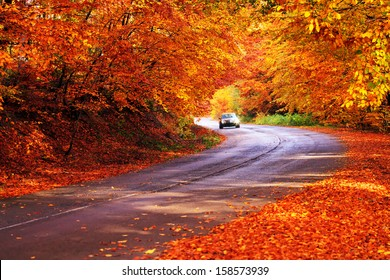 red autumn sunny road with blurred car in deep bulgarian forest