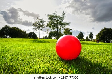The red ball on the green grass in the park