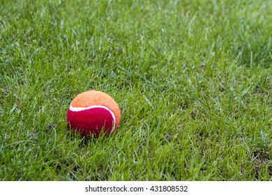 Red ball on green grass.