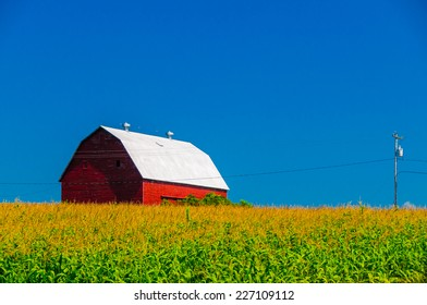 Red barn behind a cornfield in upstate New York, USA