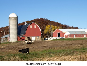 A red barn and machine sheds on a Wisconsin dairy farm.