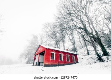 Red barn in a misty winter landscape with barenaked trees in the foggy weather