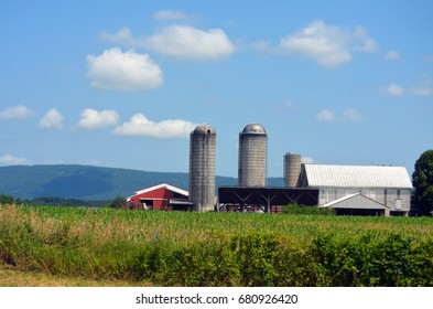 Red barn and silos in corn field