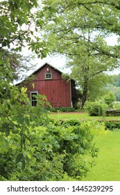 Red Barn Surrounded by Green Trees