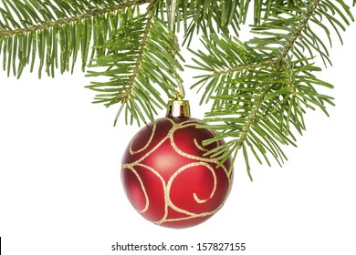 Red bauble on the fir branch. Isolated on white background