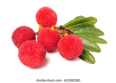 Red bayberry ?Arbutus ? isolated on white background