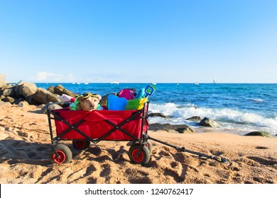Red beach cart with luggage and funny dog with goggles n front of the sea