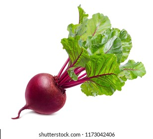 Red beet root with leaves isolated on white background. Package design element with clipping path