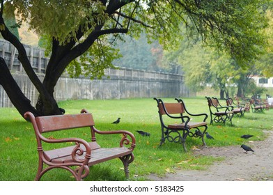 Red benches, green grass, single tree. Shallow DOF. Focus on first bench.