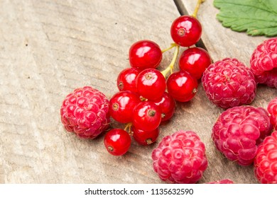 Red berries on an old board. Summer background.