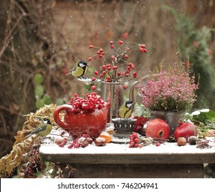 Red berries, two red pomegranates, red Heather and the three birds in the winter garden
