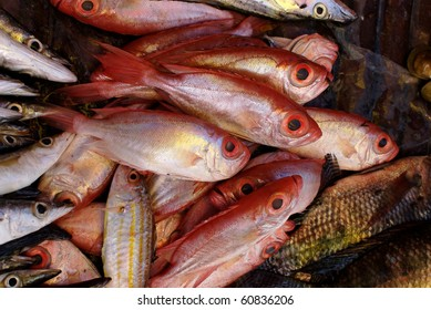 Red Bigeye fish on display on a Philippine market stall
